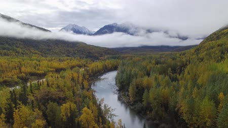 alasca : Fly over autumn forest, river and mountain