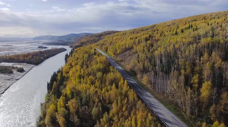 árvores : Richardson highway aerial
