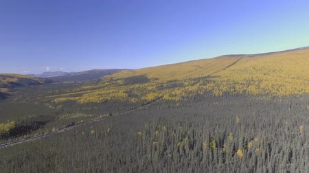 surový : Aerial footage of the Alaska oil pipeline in the fall season, Dalton Highway