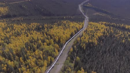crude : Aerial footage of the Alaska oil pipeline in the fall season, Dalton Highway