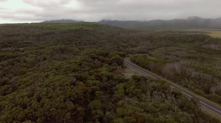 aerial footage of winding road through forest