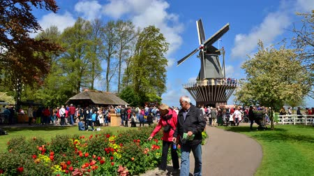 moinho de vento : Lisse The Netherlands  May 7 2015: Old windmill with many people in famous garden in Keukenhof.