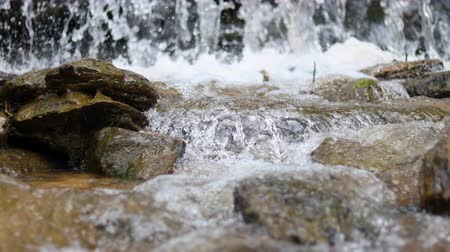 Fast flowing river water through stones. Selective focus, focus on stone. Стоковые видеозаписи