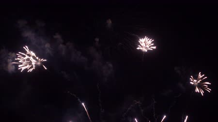 roka : Beautiful colourful Firework display at night Stok Video