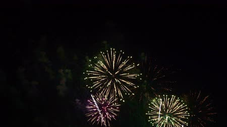 polvora : Beautiful colourful Firework display at night Archivo de Video