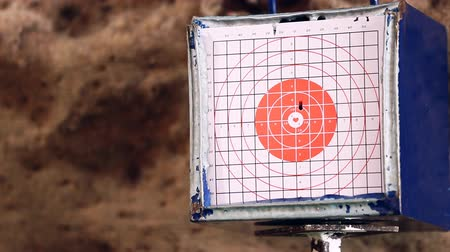 hedef : gun shoot to the shooting target concept Stok Video