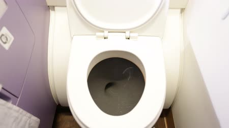 sanitário : flush the toilet in air plane .