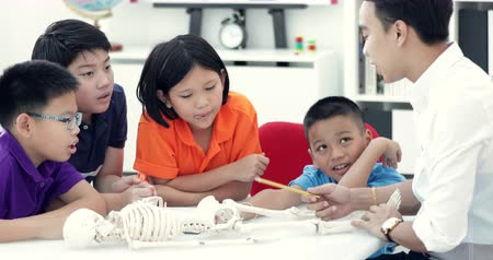 medical student : Asian teacher expanding to student in anatomy class with skeleton dummy .