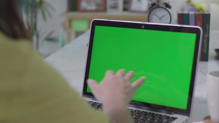 кодирование : Woman working on the laptop computer with green screen at home. Chroma key. View from the back. Стоковые видеозаписи