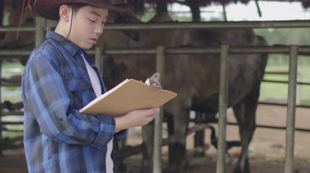 cow boy : Asian boy working at farm. Teen in blue shirt working in cow farm. Filmati Stock