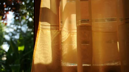 brisa : Open door with garden view and curtain on sunny day, light and shadow abstraction. Vídeos
