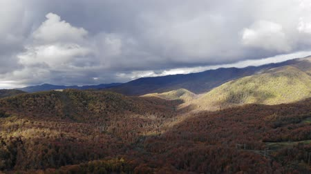 roaring : Panoramic 4K video of a stunning mountain in the colors of Autumn. Great smoky mountains drone areal view