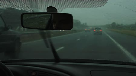 tripping : View from the inside of a car driving on the highway in The Netherlands.