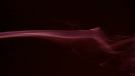 cygaro : Smoke flowing in the air on a black background. Wideo