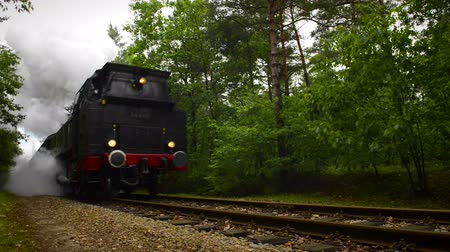 lokomotif : Old steam locomotive pulling railway carts a forest.