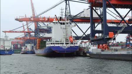 vracht schip : Containervracht schepen in de haven geladen met containers time-lapse. Stockvideo