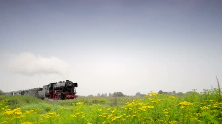 lokomotif : Old steam locomotive pulling railroad cars in the countryside.