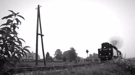lokomotif : Old steam locomotive pulling railroad cars in the countryside. Black and white footage clip. Stok Video