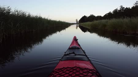 veslování : Paddling in a red kayak on a canal  in nature during sunset at the end of a beautiful summer day.
