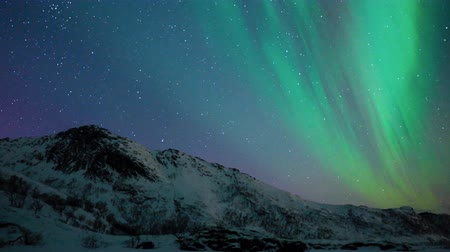 к северу : Northern Lights, polar light or Aurora Borealis in the night sky over the Lofoten islands in Northern Norway during winter.