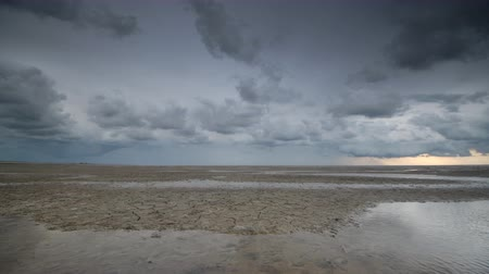 borowina : Storm clouds moving in over the Wadden sandflats in the Dutch Waddensea region in the North of The Netherlands.