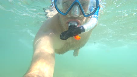 karmnik : Snorkeling man with underwater sea life at the bottom of the Atlantic Ocean off the coast of Brittany in France.