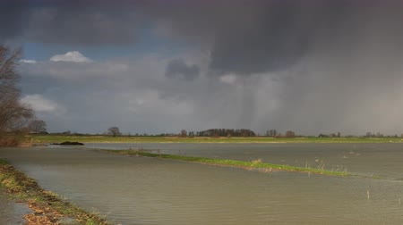 Water running over the floodplains of the river IJssel during flooding caused by high water levels in the river in Overijssel The Netherlands Стоковые видеозаписи