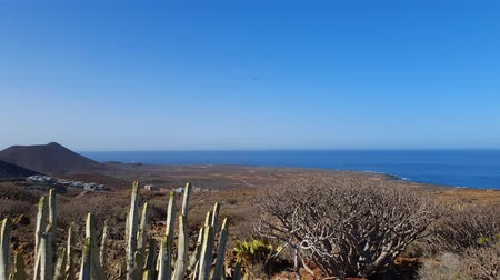 Landscape panoramic view of Canarian coast line