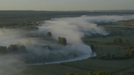 autumn forest : Fog over the river Stock Footage