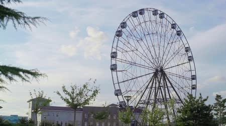 soczi : Ferris wheel n the Sochi