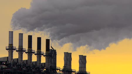 дымоход : Smoke stacks from a petrochemical plant Стоковые видеозаписи