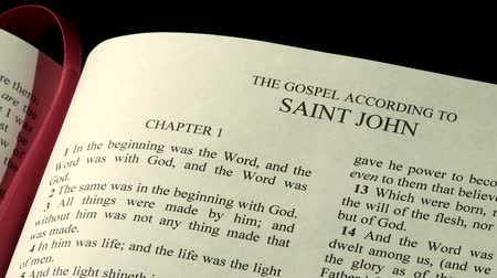 verse : The Holy Bible, Gospel of John Stock Footage