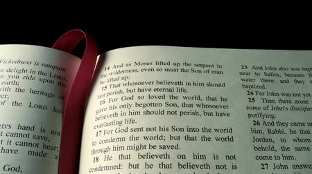 İncil : The Holy Bible, Gospel of John 3:16