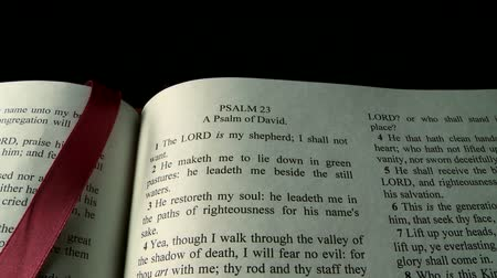 verse : The Holy Bible,  Psalm 23