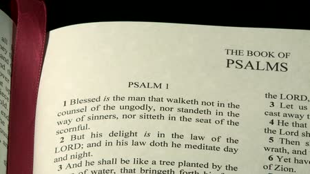 jezus : The Holy Bible, The Psalms