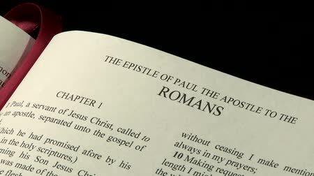 verse : The Holy Bible, Book of Romans