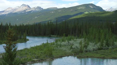 doruk : Castle Mountain Bow River, Banff Alberta