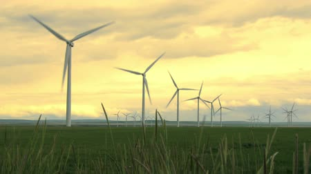 turbine : Wind turbines on farm land