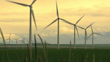 sustentável : Wind turbines on farm land