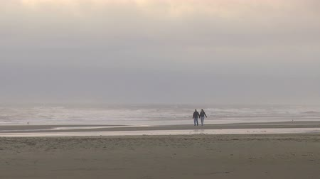Couple walking on a lonely beach