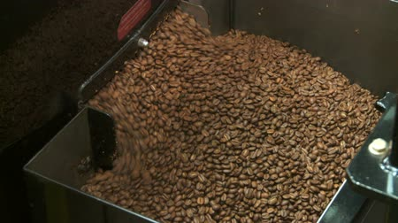 Roasted coffee beans exiting commercial size roaster, close up