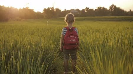 schooler : Child in green grass of rice field on way home from school. Enjoying countryside walk in summer holidays. Imagination, inspiration, hope concept. Mood of fresh air, life and nature in happy childhood