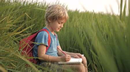 schooler : Child makes sketches of dreams in notebook in green grass of rice field on way home from school. Positive mood of happy childhood. Imagination, inspiration concept. Mood of fresh air, beauty of nature