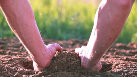 amarrotar : Hand of man farmer and arable land, dirt. Close up. Protect nature Vídeos