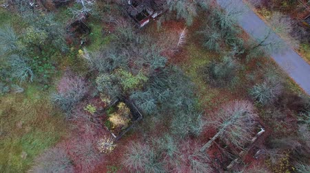 aeroespaço : 4K Aerial. Destroyed houses in thrown village. Chernobyl radiation area, top view. Ukraine. Vídeos