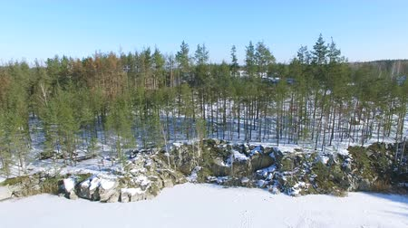 aeroespaço : 4K Aerial. Winter fly to frozen lake over trees. Low height panorama