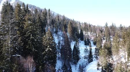 4k.Aerial.Winter in mountain hills. Slow fly Стоковые видеозаписи