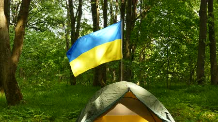 4K. Small tourist camp, tent with Ukrainian flag in wood.