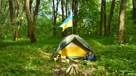 realtime : 4K. Small tourist camp, tent with Ukrainian flag in wood.