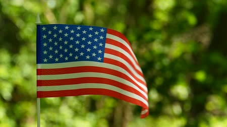 American Flag in slow motion. Forest green background